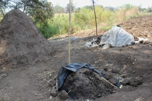 """Compost piles """"cooking"""" under plastic sheets"""